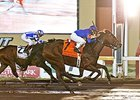 Discreetness Battles to Springboard Mile Win