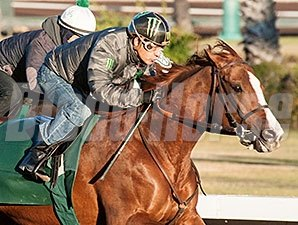 California Chrome works under Victor Espinoza Dec. 27.