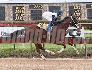 Recount wins the 2015 Blackhawk Handicap.