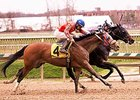 Ravenheart Tough in MD Juvenile Futurity Win
