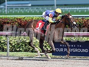 Cali Star wins the 2015 Rampart Stakes.
