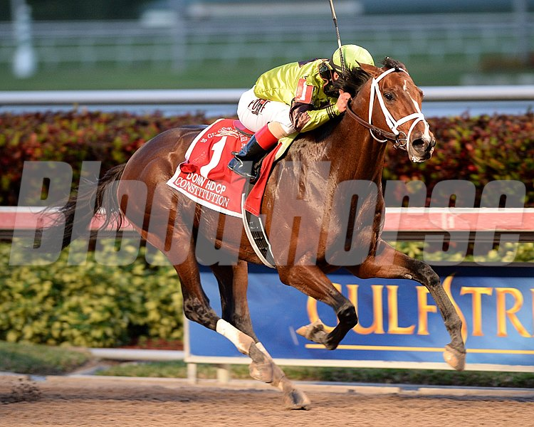 Constitution and jockey Javier Castellano win the Grade I Donn Handicap at Gulfstream Park on February 7, 2015. 