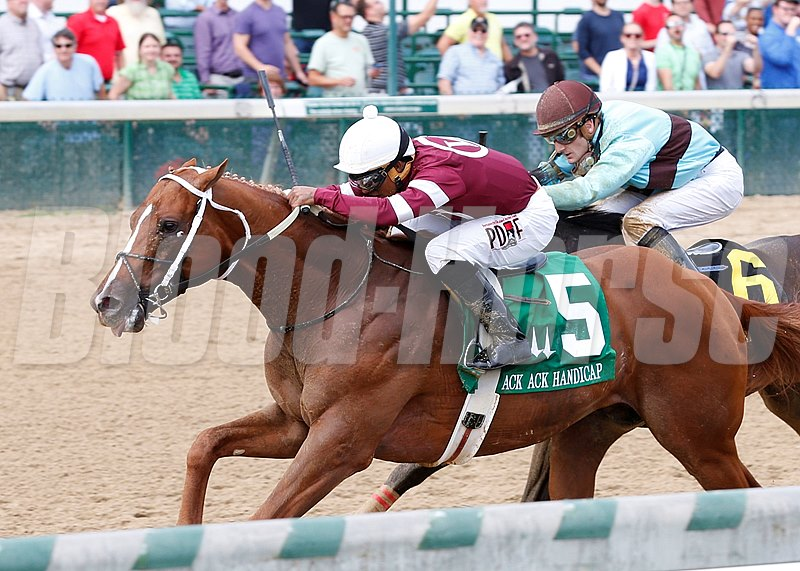 Winchell Thoroughbreds' Tapiture returned to winning form September 26, 2015 at Churchill Downs, gamely holding off favored Viva Majorca to win the $100,000 Ack Ack Handicap (gr. III).