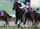 Leontes Wins Asahi Hai Futurity in 2nd Start