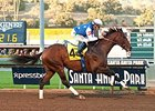 Runhappy Untouchable in Malibu Victory