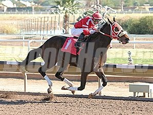 Rocked Twice wins the 2015 Cactus Wren Stakes.