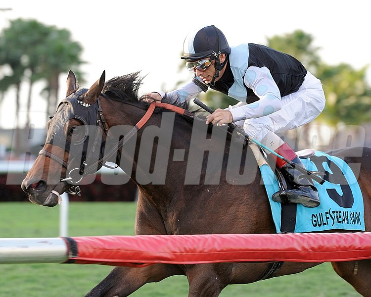 Amira's Prince wins the Mac Diarmida Stakes (gr. 2)