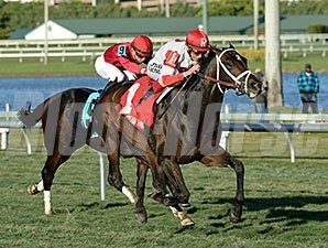 Charming Kitten (right) and Xaverian put up good Equibase figures in the H. Allen Jerkens Stakes