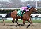 La Verdad Gallops to Easy Interborough Win