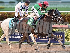 Mexikoma fights off Mr. Jordan to win the Sunshine Millions Classic Stakes.