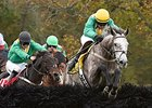 Dawalan Named Champion Steeplechase Horse