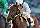 San Onofre Too Strong in Midnight Lute
