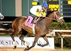 Forever Unbridled Claims Ladies Classic