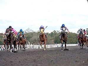 Whatawonderflworld, Vieja Luna Win OBS Races