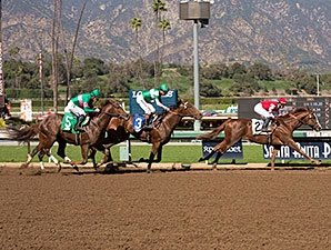 Ziconic More Than Memorable In Debut Bloodhorse Com