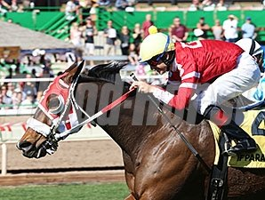 Rocked Twice wins the 2016 Turf Paradise Handicap.