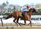 Governor Malibu Has Strong Work for Belmont