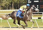 Destin Posts First Stakes Win in Sam F. Davis