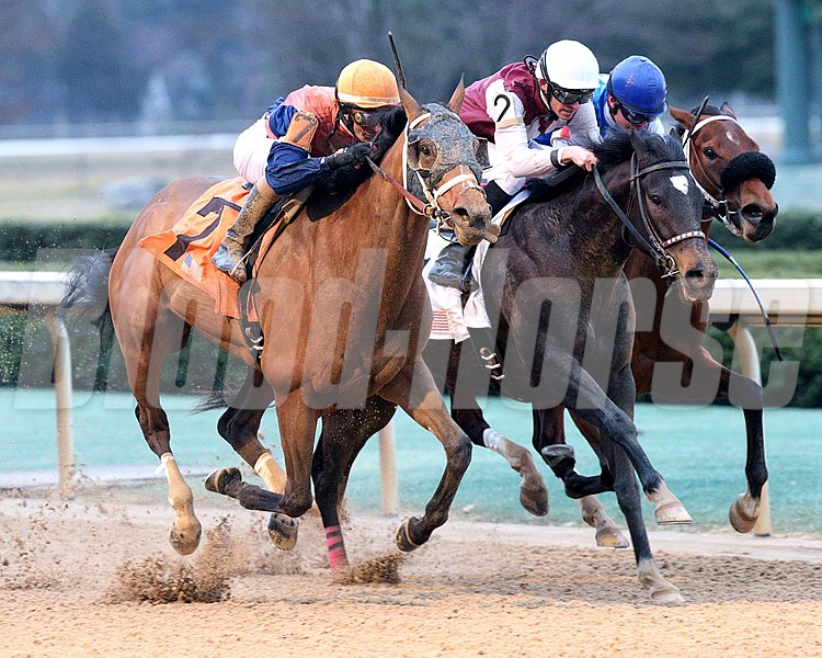 CALL PAT The Bayakoa G III - 24th Running Oaklawn Park     Hot Springs, Arkansas February 14, 2016    Race #08 Purse $100,000 1-1/16 Miles  1:45.81 Miller Racing LLC, Owner Brad H. Cox, Trainer Joseph Rocco, Jr. , Jockey Streamline (2nd) Meshell (3rd) $6.80  $4.20  $3.20 Order of Finish - 7, 2, 1, 4 Please Give Photo Credit To:  Coady Photography