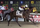 Stormdriver Upstages Favorites in Louisiana