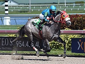 Sprinter X Y Jet Continues Roll at Gulfstream