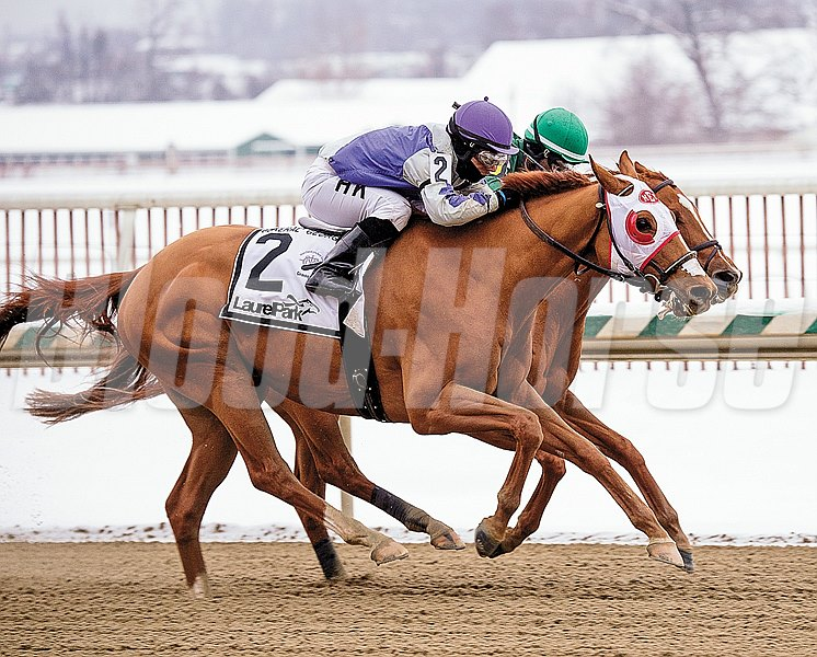 Photo by: Jim McCue/Maryland Jockey Club