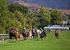 Santa Anita Plans Overhaul of Turf Course