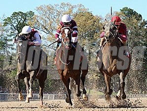 Call Pat (right) ran from last to first to win inside the final sixteenth over Untapable