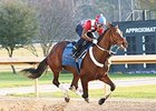 Untapable Set for Azeri Return