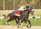 Destin, Danzing Candy Make Top 5 in NTRA Poll