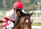 Final Test for Songbird in Santa Anita Oaks