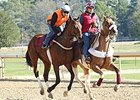 Suddenbreakingnews Works for Arkansas Derby
