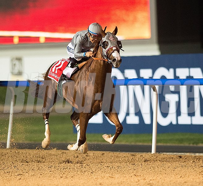 Victor Espinoza guides California Chrome to victory in the Dubai World Cup (UAE-1) at Meydan Racecourse.