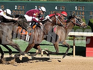 Call Pat comes up the inside to defeat Untapable in the Azeri.