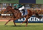 Capitalist Dazzles in Golden Slipper Win