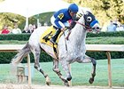 Baffert Claims Another Rebel Win With Cupid