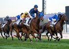 Seven-Time Group I Winner Buffering Retired