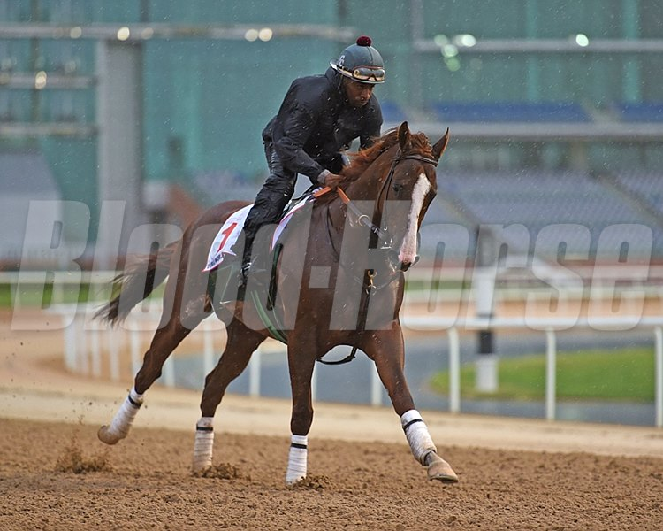 Mathea Kelley/Dubai Racing Club