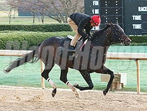Gentlemens Bet works at Oaklawn March 6.