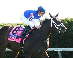 Connections Showcase Tepin on Derby Day