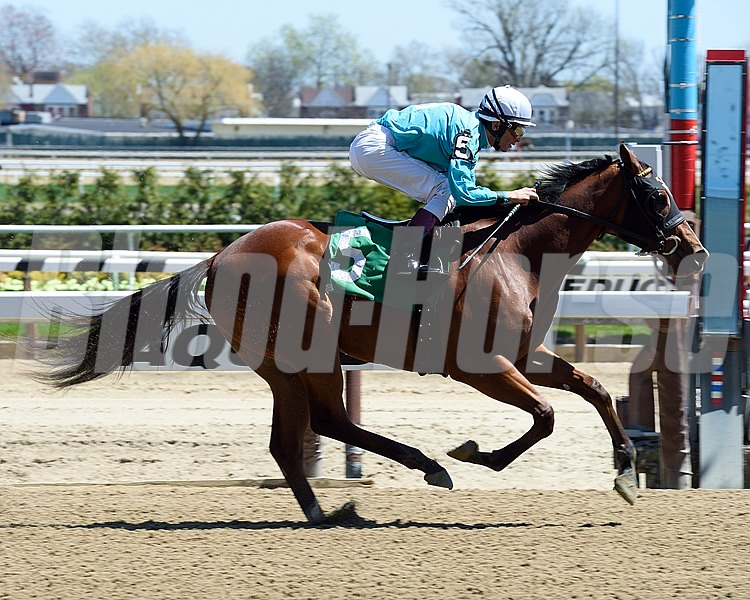 Lady Stardust Maiden Win, April 20, 2016 First winner for Union Rags