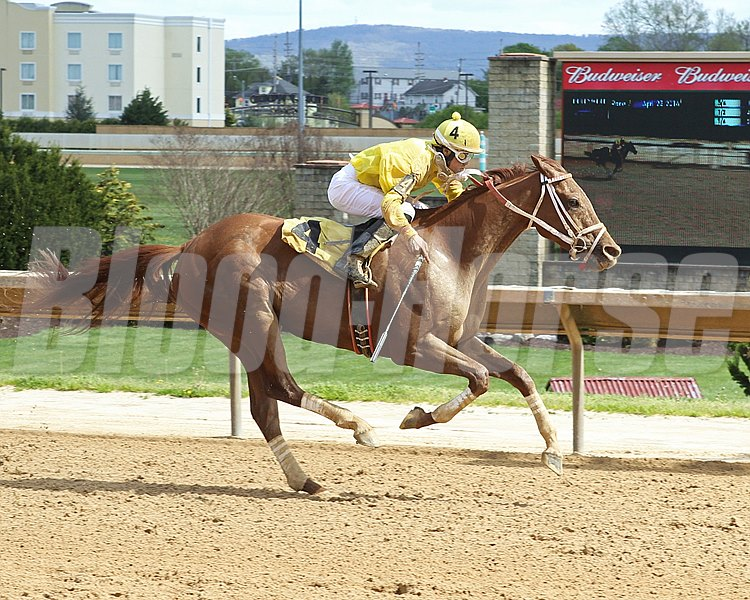 Judge Carr zooms to victory in the Caixa Eletronica Handicap at Hollywood Casino at Charles Town Races.