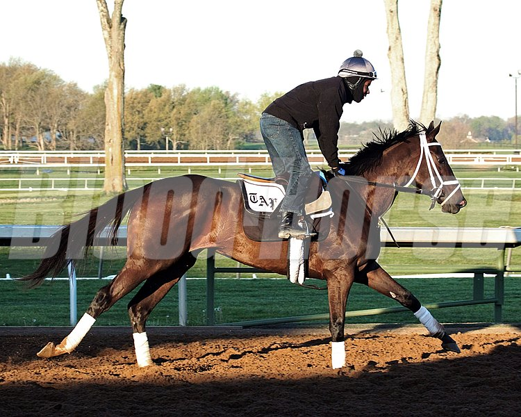 Stopchargingmaria trains at Keeneland April 17.