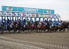 NYRA Looking at Synthetic Track for Aqueduct