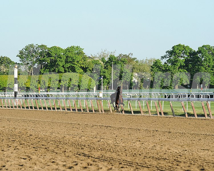 Belmont Park Morning Works