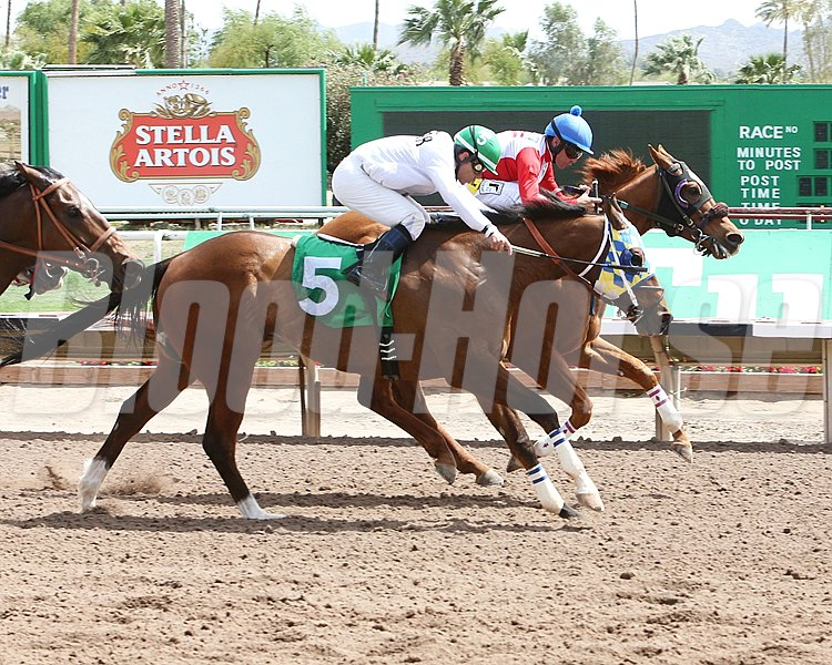 Wildcat Moon prevails over Just Meteor in the Honest Mac Stakes at Turf Paradise.