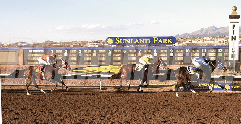 Go Kitty Go wins Borderland Derby in February 2004 at Sunland Park. Track sent photo