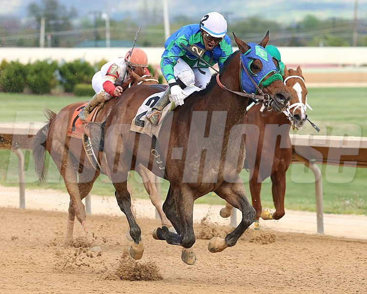 In the Fairway battles down the stretch to win the Confucius Say Stakes at Hollywood Casino at Charles Town Races.