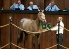 Rice Acquires Speightstown Filly for $440,000