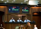Son of Candy Ride Brings $875,000 at OBS
